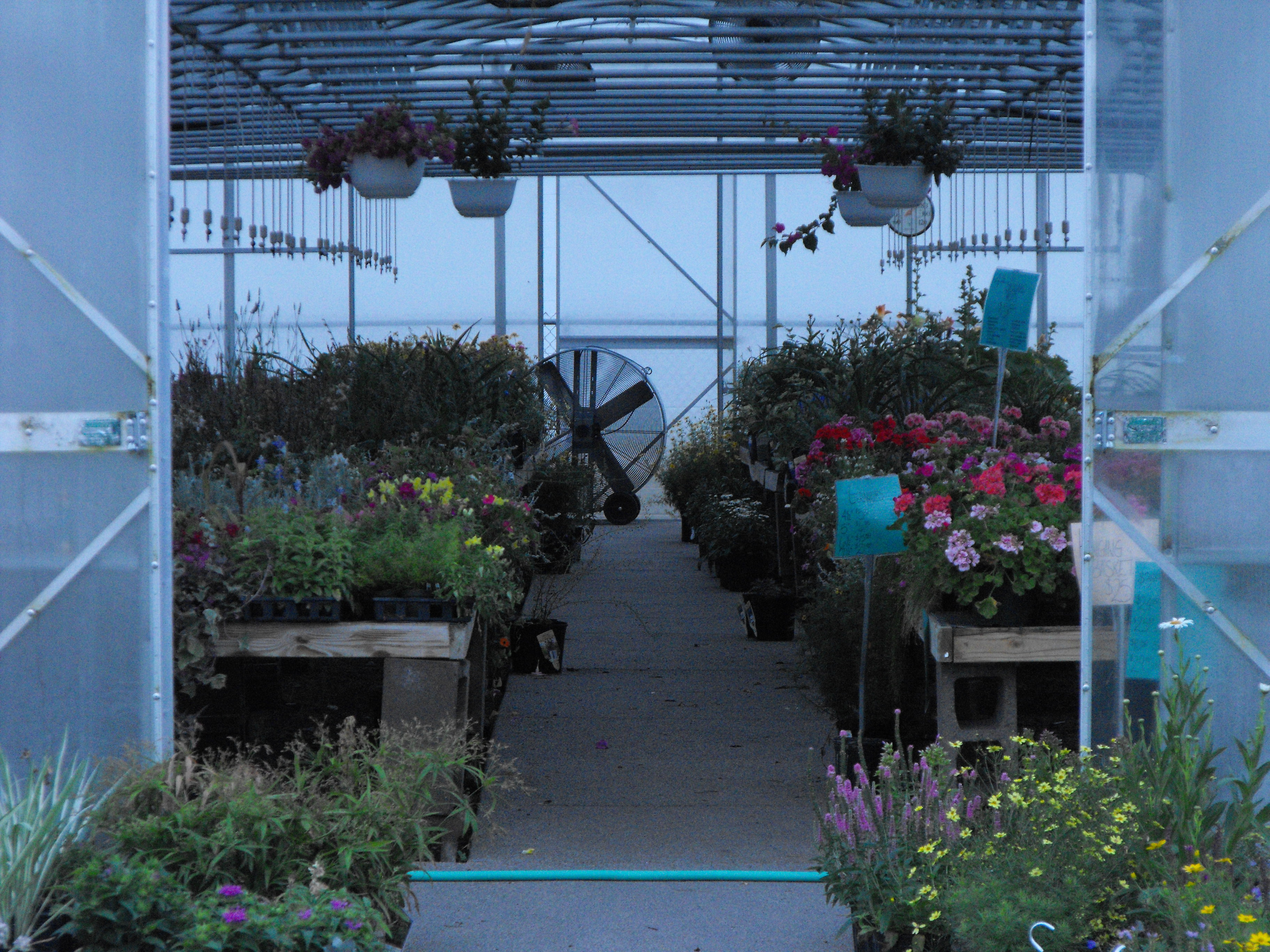 ... Might Have Concerning Your Landscape Needs, We Invite You To Perk A Lawn  Gardens To Stroll Through Our Beautiful Garden Center, Nursery And Gift Shop
